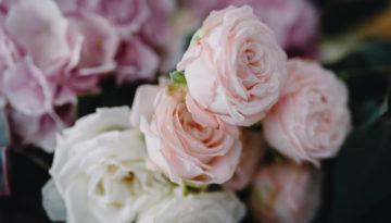 garden-weedon-florist-5