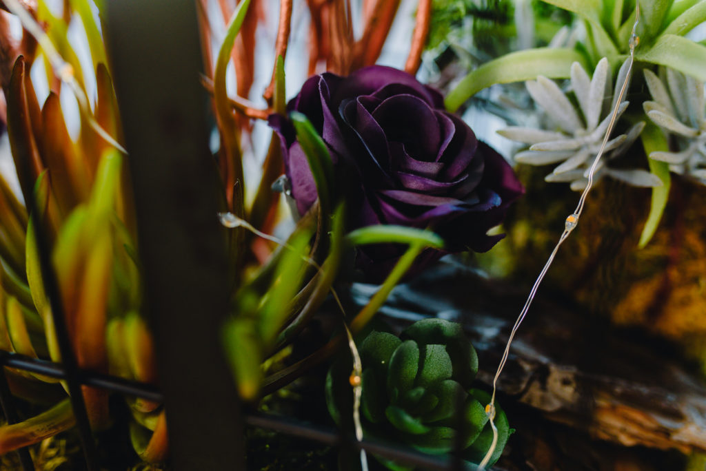 garden-of-weedon-wood-farm-styled-shoot-88